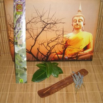Pack support+bâtons d'encens senteur lavande-eucalyptus Oléobio